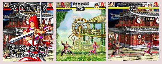 Winner Fighting 3D 13